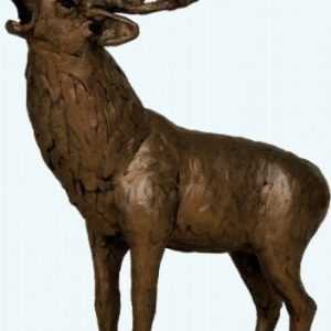Stag Roaring - Frith Sculptures